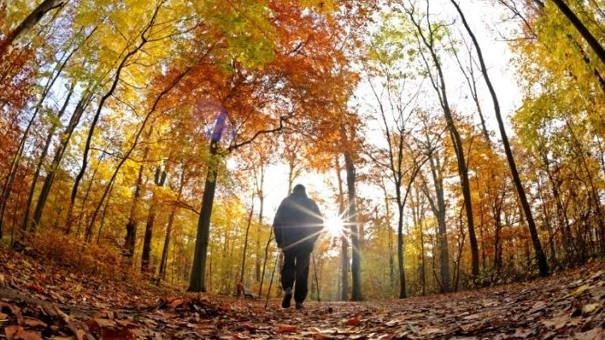 Прогноз погоди на 17 вересня в Україні