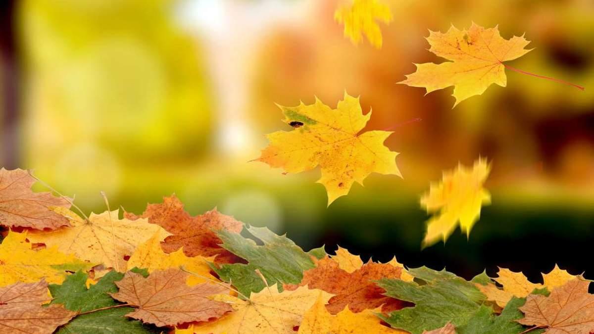 Погода на 6 жовтня в Україні від синоптиків