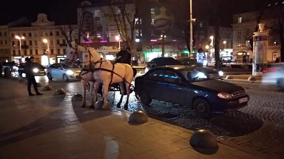 У центрі Львова карета з кіньми зіткнулась з Lanos: відео