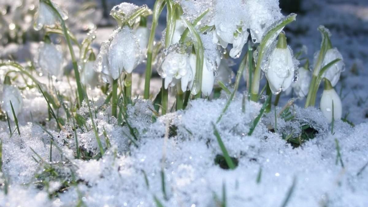 Штормовой ветер: прогноз погоды во Львове и области на 27 февраля 2021