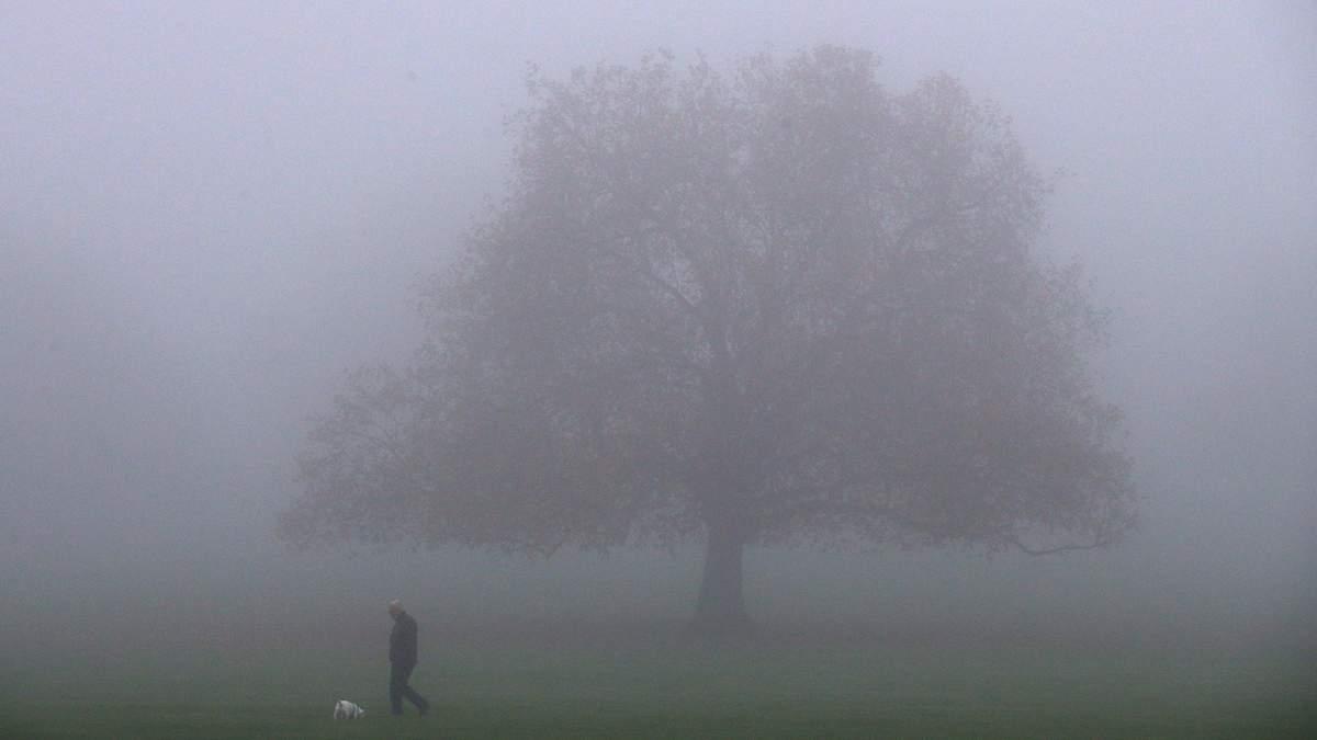 Львівщину вкриє туман: надзвичайники попередили про погіршення видимості