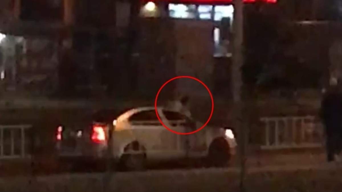 Во Львове мужчина под наркотиками прыгал на авто, которые ехали рядом