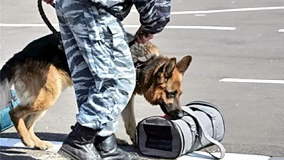 Опасная находка: на таможенном посту Мостиска нашли подозрительную сумку
