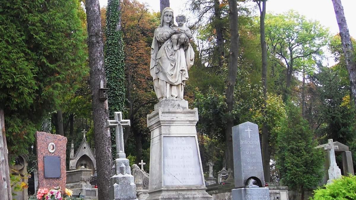 Львов компенсирует 15 миллионов гривен за срезанные деревья: в городе расширяют кладбища