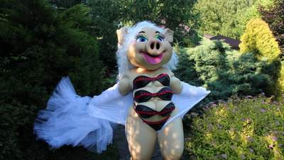 Розваги для дорослих: у львівському дитячому центрі пропонують замовити свинку-стриптизерку