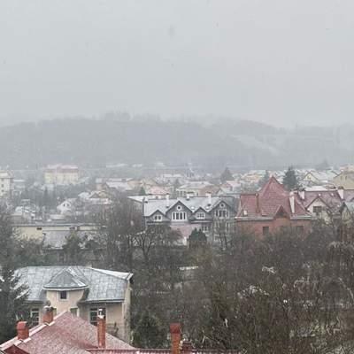 Львів припорошило снігом: чарівні фото та відео
