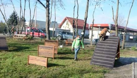 У Львові відкрили новий майданчик для тренування собак: фото